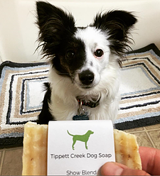 Pax the Panda Review of Tippett Creek Dog Soap